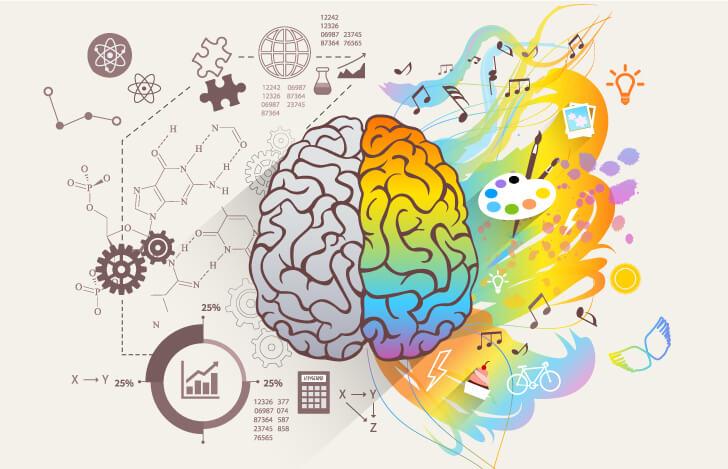 右脳と左脳の働きのイメージ