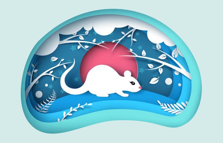 冒険に出る白いネズミの切り絵