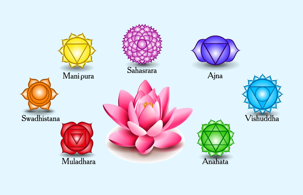 蓮の花で描かれるチャクラ