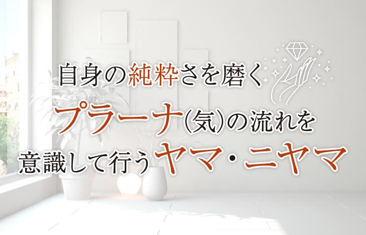 白い花瓶と観葉植物が置かれた白い部屋
