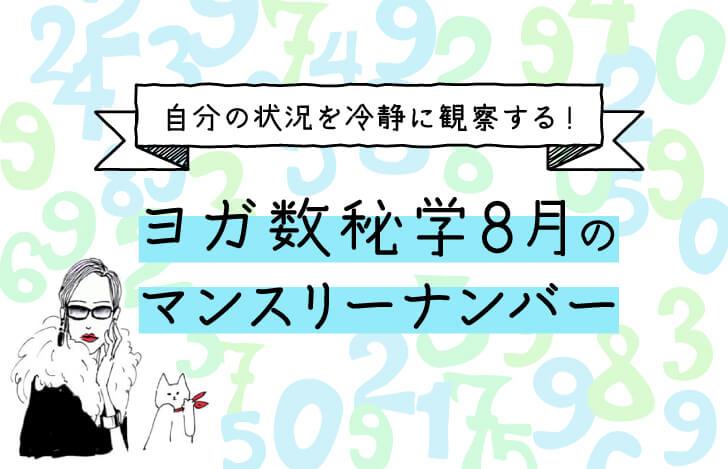 数字とマダムYUKOと猫