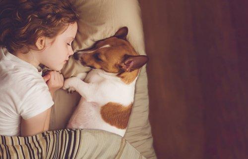犬と子どもの寝顔