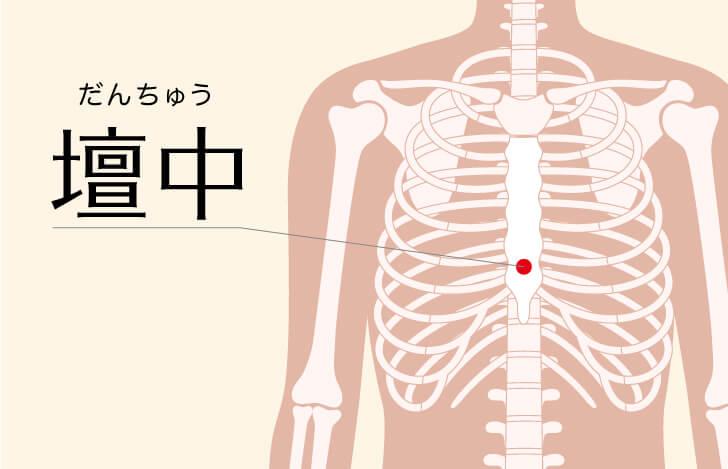 壇中のつぼの位置を示す人体骨格のイラスト
