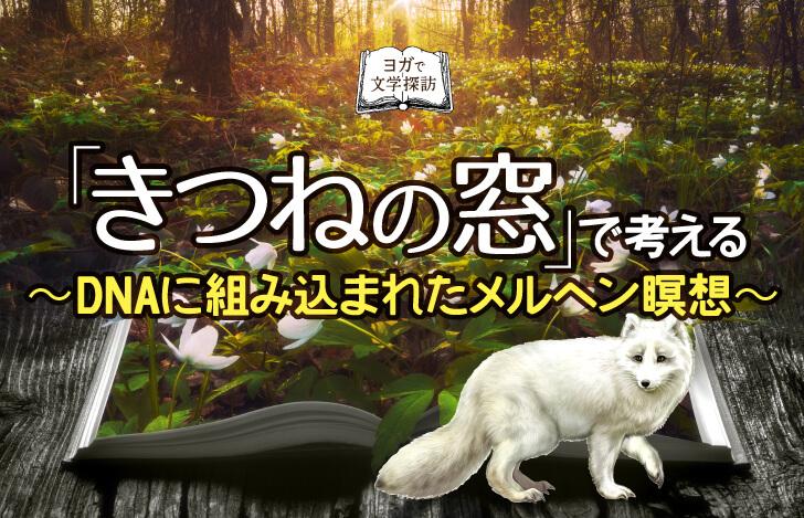森の中に開かれた本と白いキツネ