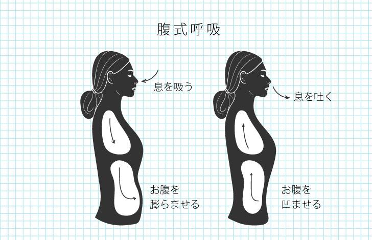 腹式呼吸の時のお腹の状態を説明するイラスト